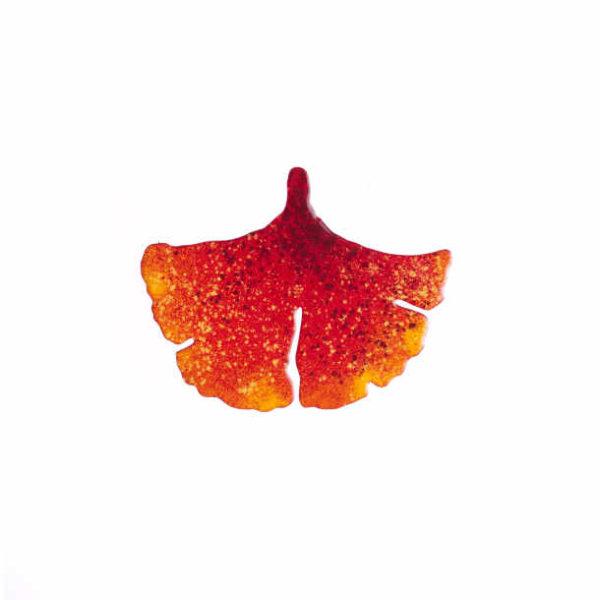 ginko smaltovaná brož červenooranžová
