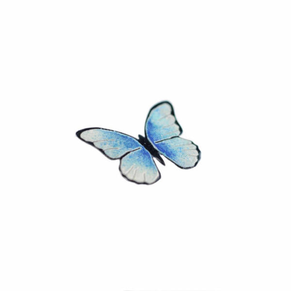 modrý motýl brož